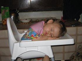 После вкусного обеда можно и поспать...
