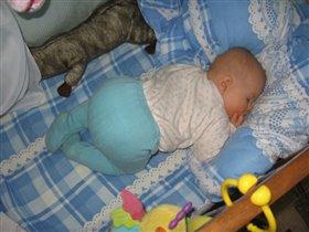 Вот так мы спим, и ничего нам не страшно, ни мороз ни жара.