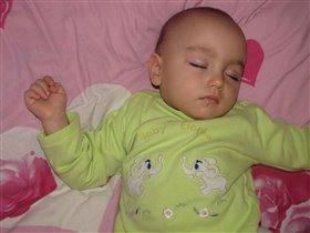 спящая красотка