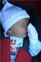 Лёвушка спит не свежем воздухе!