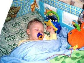 Спи, моя радость, усни!!! Пусть приснятся тебе сладкие сны!!!