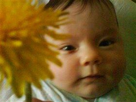 мамин цветочек
