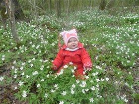 Люблю ВЕСНУ, цветы и солнечные, теплые деньки!!!