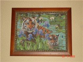 Тигры (Кандамар)