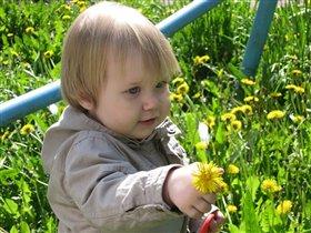 Дарю цветочек от сердца и почек