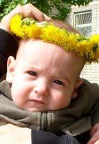 Ярослав, весна и одуванчики
