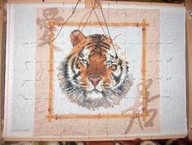 Процесс. Уссурийский тигр.