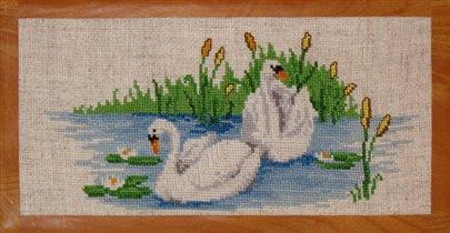 072_лебеди