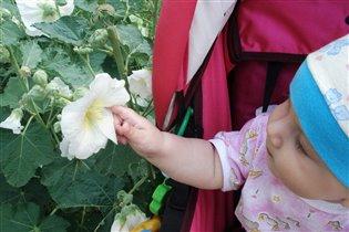юный флорист