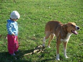 на прогулки с собакой!