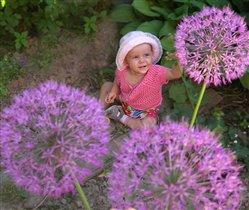 В селе Летово все фиолетово :-)