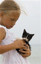 Портрет котёнка с девочкой
