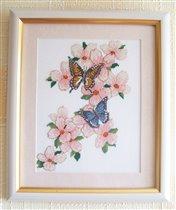 Мои бабочки