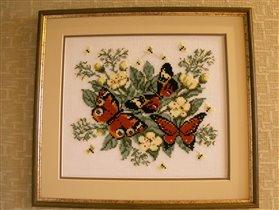 **Летнее чудо - бабочки!**