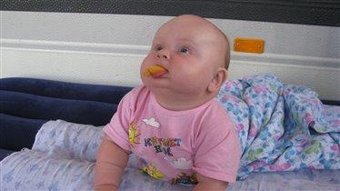 Этот вкусный абрикос...