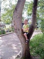 Я Сам на дерево взобрался!
