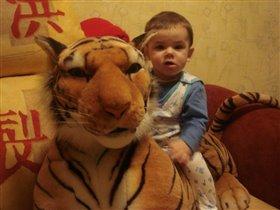 С тигрой