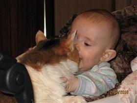 Так мы любим кошку
