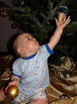 ой, какая шишичка на елки