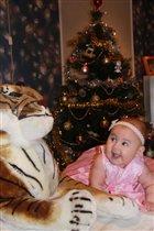 Тигра, с Новым годом !