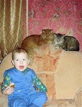 А вам котики я вкусное не дам!!!