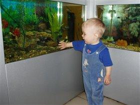Новосибирский зоопарк - Аквариум