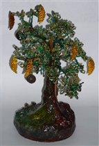 Денежное дерево (бонсай)