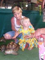 Вот какие бывают черепахи!!!