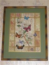 Dimensions 35063 Торжество сверкающих бабочек