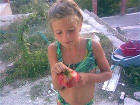 Свои помидоры...