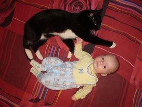 Мои котята :)