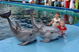 А дельфины добрые, А дельфины мокрые...
