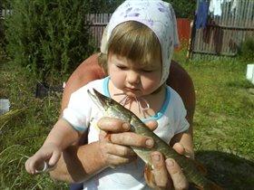 А с рыбкой можно?