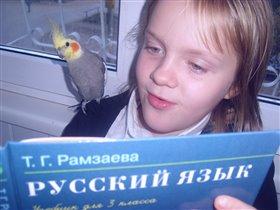 конкурс 'наши меньшие друзья' Ликбез для попугаев