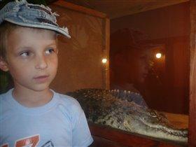 А я вот с крокодилом!