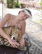Нежности от леопарда
