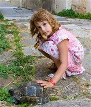 А теперь покатай меня большая черепаха