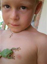 Моя царевна лягушка