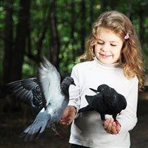 Алиса и голуби