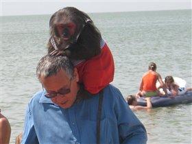В понедельник на море я увидела обезьянку