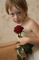 Прекрасная роза для юной леди