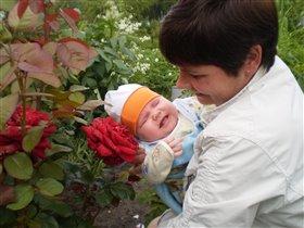 Мамина радость в цветах