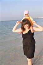 На берегу Персидского залива