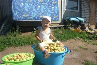Огурцы и яблочки со своего огорода!!!!!!!!!!!!!!!