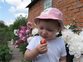 А, я ягоды люблю, я их вместе соберу....