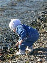 Девочка собирающая ракушки