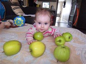 Мои любимые яблочки