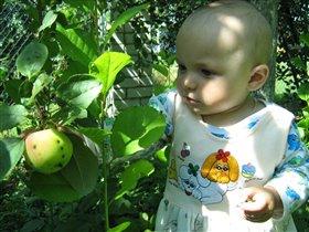 ой какое яблочко,  сейчас я его сьем!
