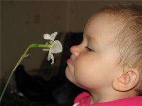 Aх, как пахнет цветочек!!!