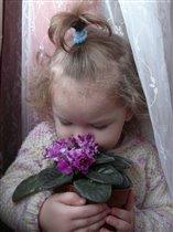 Какой красивый цветок:))))))